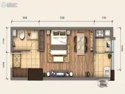 新阳光广场1室1厅1卫34平方米户型图