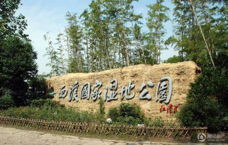 滨江西溪明珠