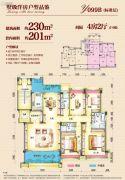 连州碧桂园4室2厅3卫230平方米户型图
