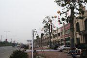 东方玫瑰园外景图