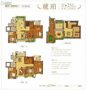 德杰国际城5室3厅4卫251平方米户型图