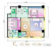 天安国汇2室2厅2卫172平方米户型图