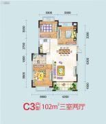 天润万象城3室2厅1卫102平方米户型图