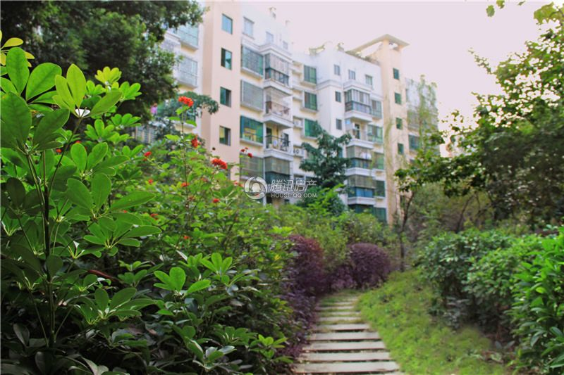 鑫灿·爱琴湾畔园林图